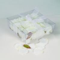 Rosenblätter in creme