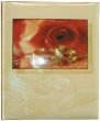 großes Hochzeitsalbum Rose & Ringe